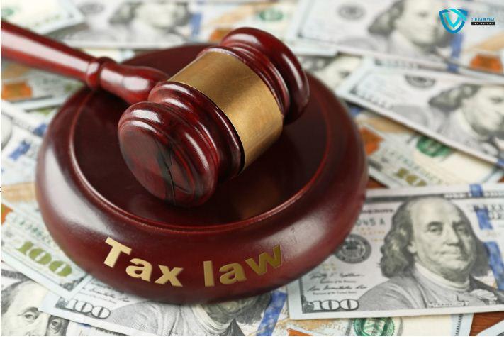 72 điều cần tránh để Doanh nghiệp nộp thuế không bị phạt (Phần 1) 8