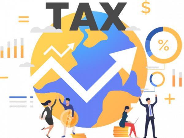 Báo cáo thuế là gì? Một vài thông tin khái quát về báo cáo thuế 14