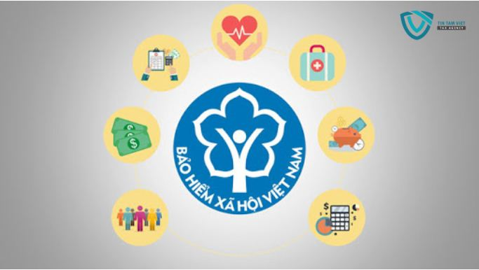Dịch vụ hỗ trợ thủ tục đăng ký bảo hiểm xã hội